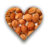 Herz gefüllt mit Aprikosensteinen Lizenzfreie Stockbilder