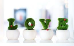 Herz gemacht vom gesunden Gras auf Holzoberfläche und Kopieraum Lizenzfreies Stockfoto