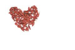 Herz gemacht von den roten Blumen Stockfotos