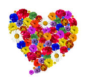 Herz gemacht von den schönen frischen Blumen Lizenzfreie Stockfotografie
