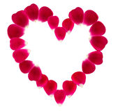Herz gemacht von den schönen rosafarbenen Blumenblättern Lizenzfreies Stockbild