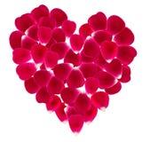 Herz gemacht von den schönen rosafarbenen Blumenblättern Lizenzfreie Stockbilder
