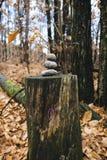 Herz gezeichnet über Stamm mit drei Steinen an der Spitze, im Anflehung Stockfotos