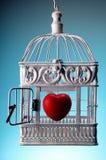 Herz im offenen Käfig Stockfotografie