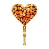 Herz mit Acajoubäumen Lizenzfreies Stockfoto