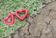 Herz mit zwei Rottönen auf dem Gras und dem trockenen Land Stockfoto
