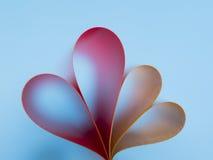 Herz mit zwei Rottönen auf Steigungshintergrund Stockfotografie