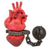 Herz-Schmerzkonzept Menschliches Herz mit Fessel Wiedergabe 3d lizenzfreie abbildung
