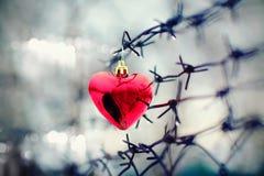 Herz und Stacheldraht Stockbilder