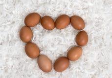 Herz von den braunen Eiern auf Stapel von weißen Federn Stockfotografie