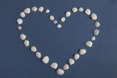 Herz von den weißen Muscheln Valentinsgruß `s Tag Stockbild