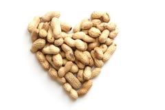 Herz von getrockneten Erdnüssen in der Nahaufnahme Stockbilder