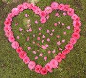 Herz von Rosen und von rosafarbenen Blumenblättern lizenzfreie stockfotos