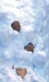 Herzen auf dem Weihnachtsbaum, Schnee, Winter, Valentinsgruß ` s Tag im Park Stockbild