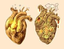 Herzen mechanisch und lebendig lizenzfreie abbildung