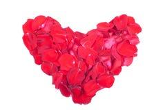 Herzen und Blumen zum Valentinsgruß lokalisiert auf weißem Hintergrundesprit Stockbilder