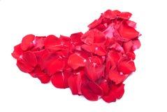 Herzen und Blumen zum Valentinsgruß lokalisiert auf weißem Hintergrundesprit Lizenzfreies Stockbild