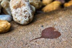 Herzform befleckt auf Stein Stockbild