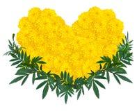 Herzform der Ringelblumen- oder Calendulablume Stockfotos