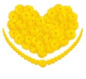 Herzform der Ringelblumen- oder Calendulablume Stockbild