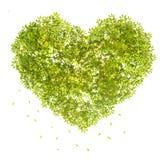 Herzform des grünen Urlaubs symble von der Liebe Lizenzfreie Stockfotografie
