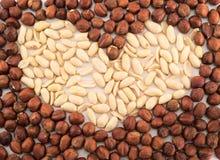 Herzform gemacht von den Erdnüssen und von den Haselnüssen lizenzfreies stockfoto