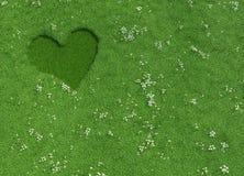 Herzform gemacht von gemähtem Gras und von Blumen Stockbild