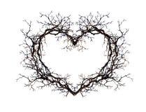 Herzform - winden Sie von den Niederlassungen, Zweige Aquarell für Tätowierungsdesign Stockfotos