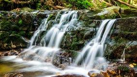 HERZIOS de Ferrata - cascadas del agua, Eslovaquia Fotos de archivo libres de regalías