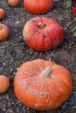 Herzlich willkommen, cucurbita pumpkin pumpkins from autumn harv Stock Photo