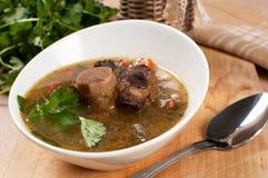 Herzliche Suppe mit Knochen-in Ochsenendstück Stockbilder