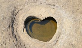 Herzpudding Beckenherz verursacht durch Abnutzung der starken Strudel stockbilder