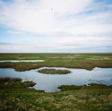 Hesketh Marsh Nature Reserve Lancashire England arkivbilder