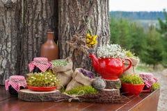 Heskie torby z leczniczymi ziele, czerwonym teapot i słojami zdrowy, Fotografia Royalty Free