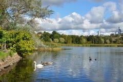 Hesperiapark (Hesperian-puisto) Royalty-vrije Stock Foto's