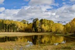 Hesperus山, Dibé Nitsaa,金黄秋天,五颜六色的科罗拉多 库存照片