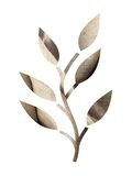 Hessian Leaf Royalty Free Stock Photography