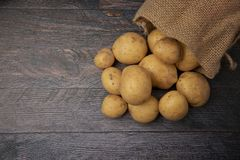 Hessian sack filled with organic potatoes royalty free stock image