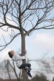 het 10 éénjarigenmeisje beklimt op een boom omhoog kijkend Stock Afbeeldingen