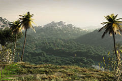 het 3D teruggeven van een fictief landschap. Stock Foto