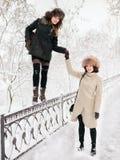 Het aanbiddelijke gelukkige jonge donkerbruine vrouwen houden dient bonthoed in die het parkbos van de pret sneeuwwinter in aard  Royalty-vrije Stock Foto's