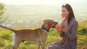 Het aanbiddelijke jonge vrouw spelen met hond en het voeden van het op aard stock video
