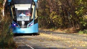Het aankomen tram in een bos stock video