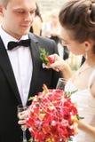 Het aanpassen bloem royalty-vrije stock foto