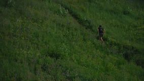 Het aanstoten in bergen van bos stock video