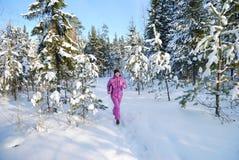 Het aanstoten van de winter Royalty-vrije Stock Afbeelding