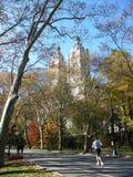 Het aanstoten van het Central Park Royalty-vrije Stock Fotografie