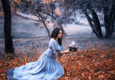 Het aantrekkelijke donkerbruine meisje zit in een donker bos op gevallen de herfst orazhevyh bladeren, gekleed in een grijze uits royalty-vrije stock afbeeldingen