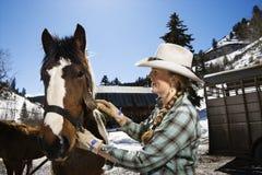 Het aantrekkelijke Jonge Verzorgende Paard van de Vrouw royalty-vrije stock foto
