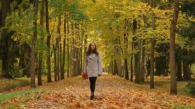 Het aantrekkelijke meisje, met een bos van gele bladeren, onderhoudt in een park en werpt de bladeren stock video